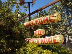 Hope33