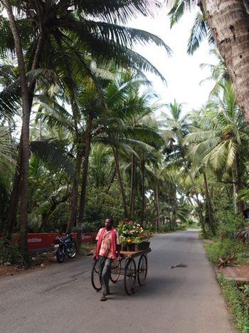 Goa01