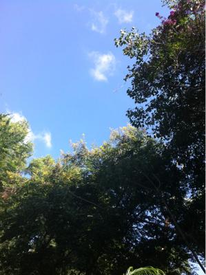朝の空は。
