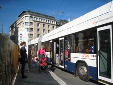 3003bus
